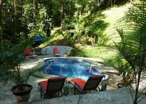WO-forest pool Mary Mugridge